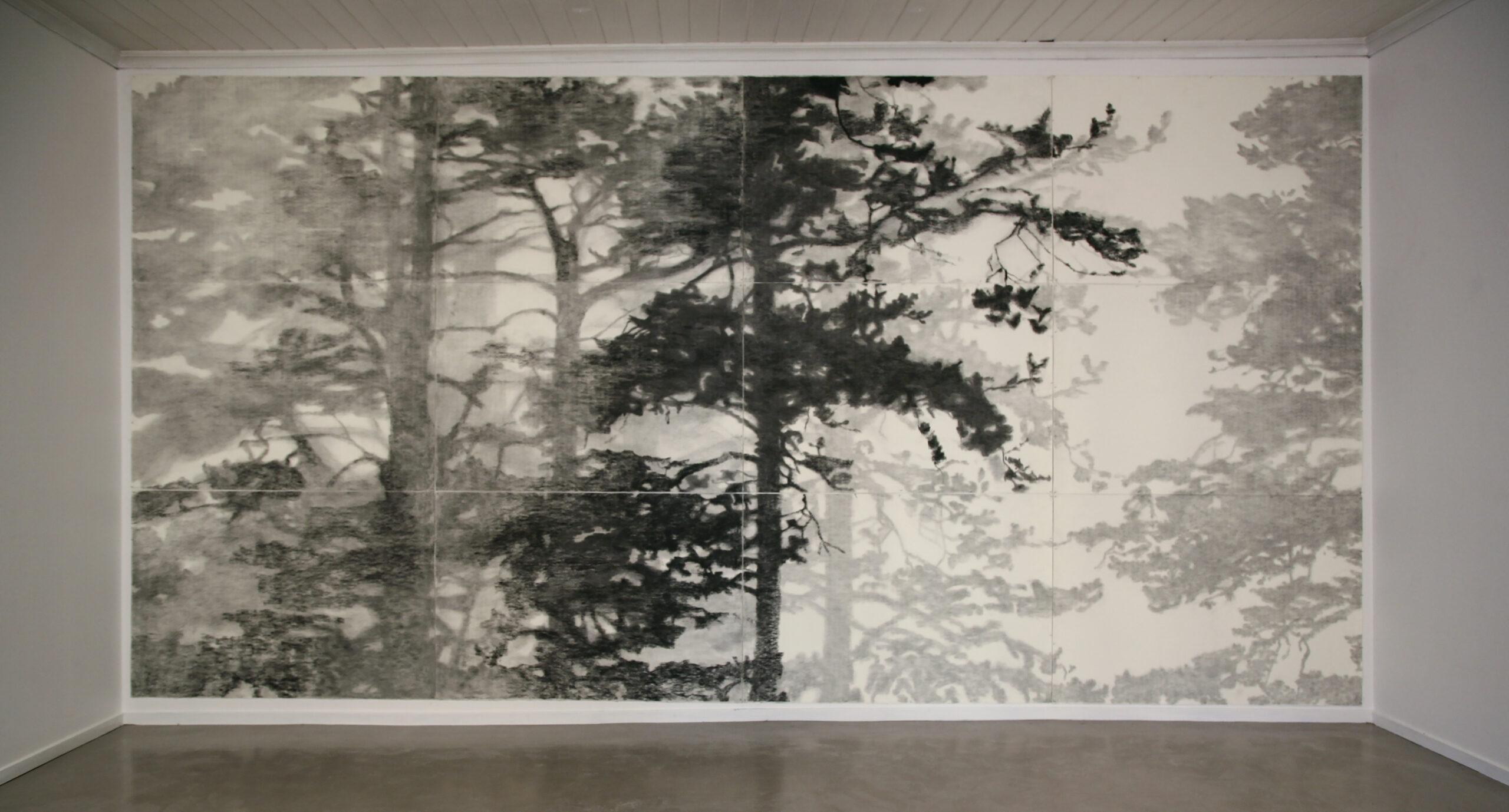 SJIKT.-Kull-pa-papir-300-x-650-cm.-Akershus-Kunstnersenter-2007